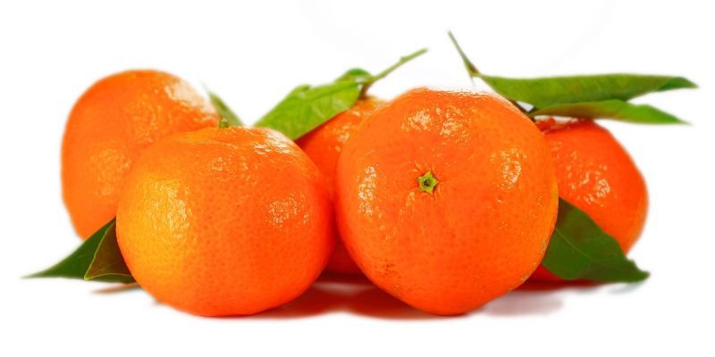 dietary balance nutrition citrus fruit